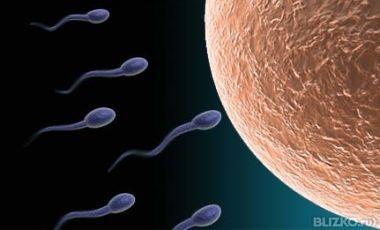 v-pope-u-muzha-sperma